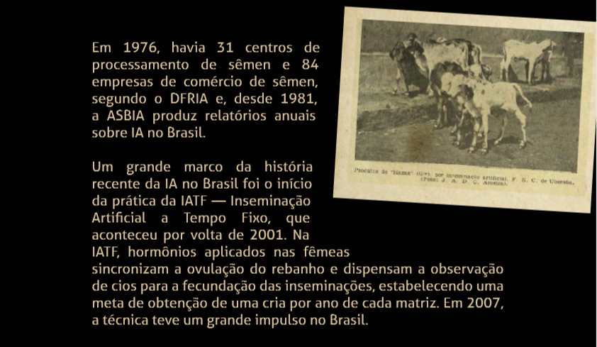Um grande marco da história recente da IA no Brasil foi o início da prática da IATF — Inseminação Artificial a Tempo Fixo, que aconteceu por volta de 2001. A IATF é uma grande evolução porque promove uma maior produtividade com mais agilidade na produção e melhora genética do rebanho. Em 2007, a técnica teve um grande impulso no Brasil.